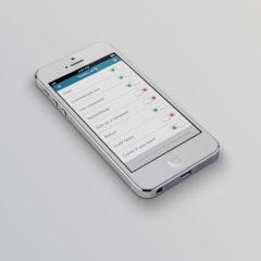 iphone5_template_big