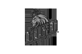 logo31_grey