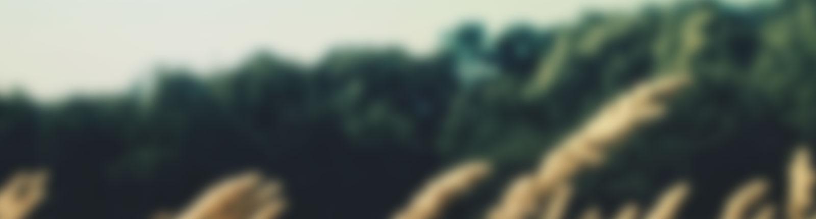 background2