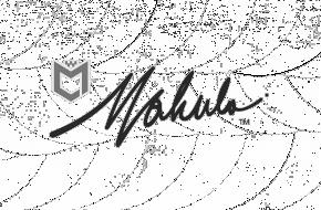 logo1_grey